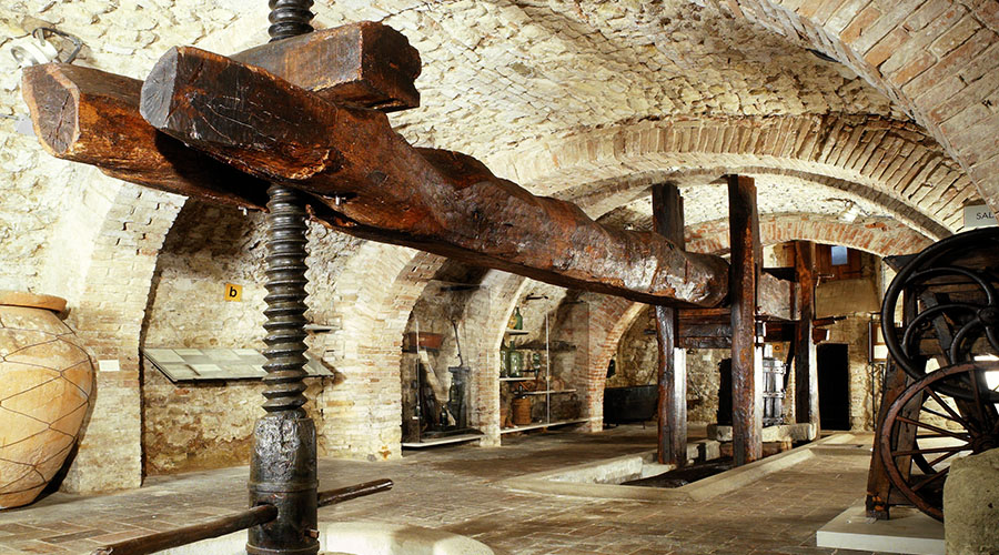 torgiano museo del vino